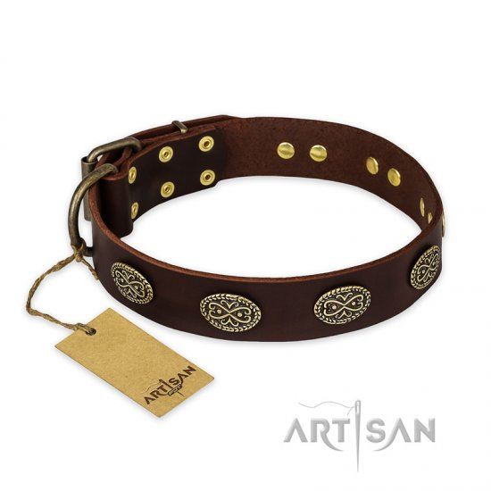 'Chocolate kiss' FDT Artisan Leather German Shepherd Collar with Old Bronze Look Oval Plates