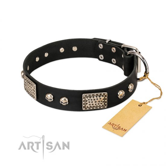 """Pirates Gold"" FDT Artisan Black Leather German Shepherd Collar with Old Silver Look Plates and Skulls"