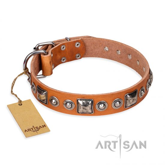 'Era of Future' FDT Artisan Handcrafted Tan Leather German Shepherd Dog Collar with Decorations