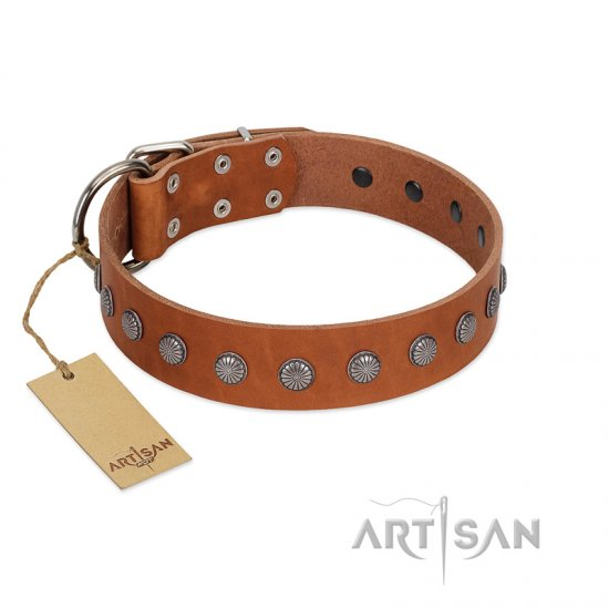 """Little Floret"" Fashionable FDT Artisan Tan Leather German Shepherd Collar with Silver-Like Adornments"