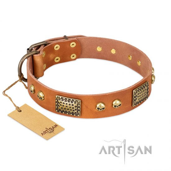 """Saucy Nature"" FDT Artisan Tan Leather German Shepherd Collar with Old Bronze Look Plates and Skulls"