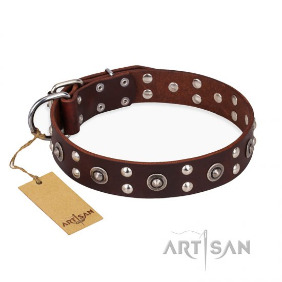 'Pirate Treasure' FDT Artisan Exciting Brown Leather German Shepherd Dog Collar with Studs - Click Image to Close