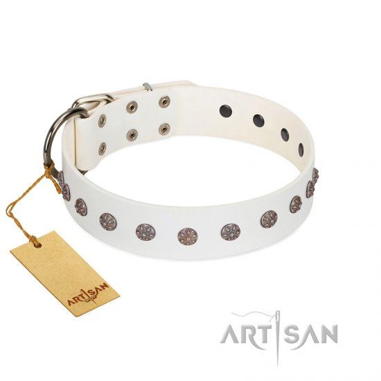 """Fresh Breeze"" FDT Artisan Elegant White German Shepherd Collar with Silvery Studs"