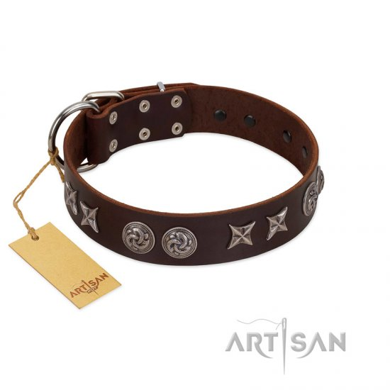"""Silver Sunset"" Designer Handmade FDT Artisan Brown Leather German Shepherd Collar"