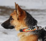 Hand painted by our artists Leather Collar for German Shepherd Dog