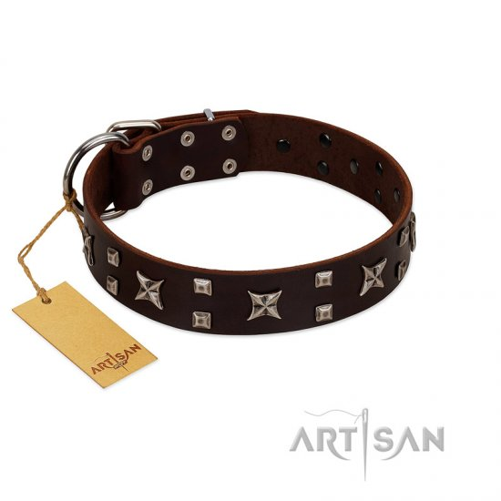 """Bigwig Woof"" FDT Artisan Brown Leather German Shepherd Collar with Chrome Plated Stars and Square Studs"