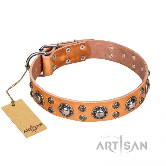 """Extra Sparkle"" Tan Leather German Shepherd Collar from FDT Artisan Collection"