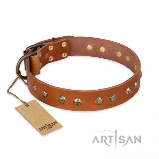 'Spring Flavor' FDT Artisan German Shepherd Tan Leather Dog Collar with Old Bronze-Like Plated Studs 1 1/2 inch (40 mm) wide