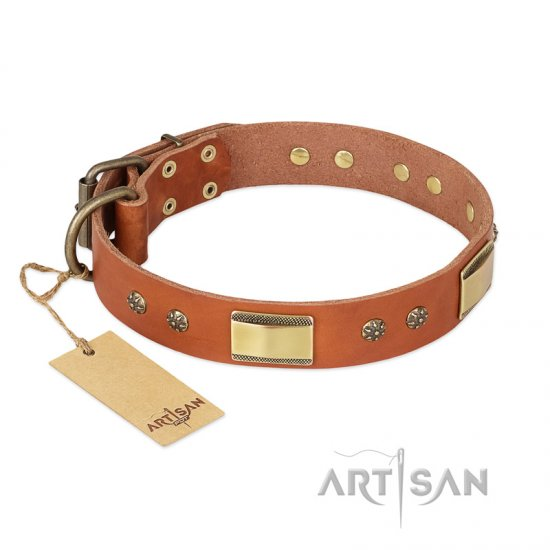 'Enchanting Spectacle' FDT Artisan German Shepherd Tan Leather Dog Collar with Golden-Like Studs - 1 1/2 inch (40 mm) wide