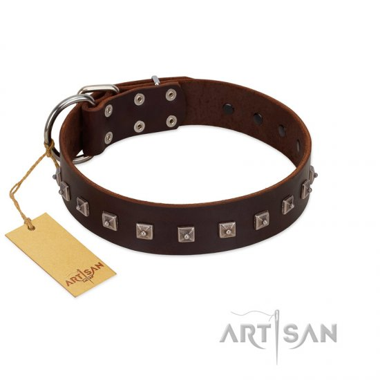 """Kingly Grace"" FDT Artisan Brown Leather German Shepherd Collar with Silver-like Dotted Studs"