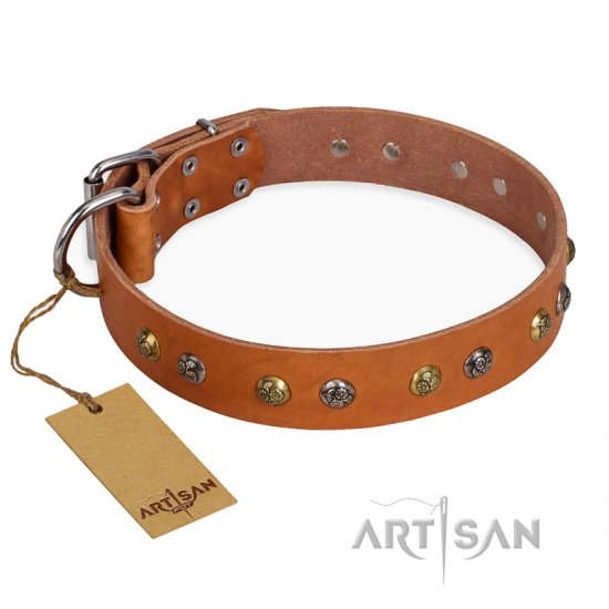 'Golden'n'Silver Luxury' FDT Artisan Leather German Shepherd Collar with Engraved Studs
