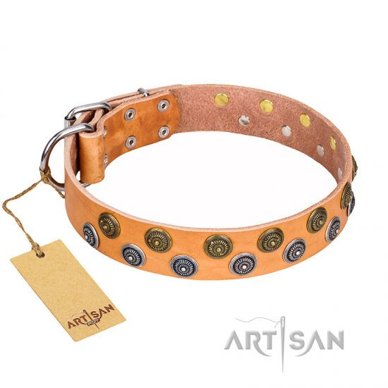 """Precious Sparkle"" FDT Artisan Handcrafted Tan Leather Collar for German Shepherd"