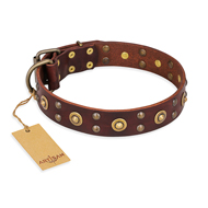 'Caprice of Fashion' FDT Artisan German Shepherd Brown Leather Dog Collar with Round Decorations