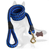Cord nylon dog leash - 5 foot dog leash