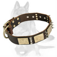 Genuine Leather Collar with Luxury Brass Plates and Nickel Spikes