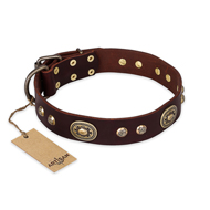 'Breath of Elegance' FDT Artisan Decorated with Plates Brown Leather German Shepherd Collar