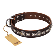 """Step and Sparkle"" FDT Artisan Brown Leather German Shepherd Collar with Studs"