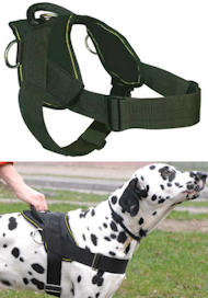 Best Dog Training Harness for GERMAN SHEPHERD