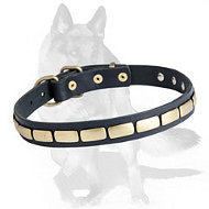 Exquisite German Shepherd Leather Collar with Plates