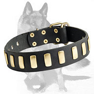 Wide Leather Dog Collar With Plates