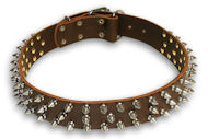 Alsatian Dog Spiked Brown collar 23'' /23 inch dog collar-S44