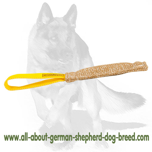 Reliable Bite Dog Tug made of Jute