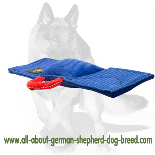 Strong dog pad for bite training