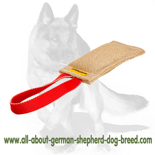 Jute Dog Bite Tug with Handle