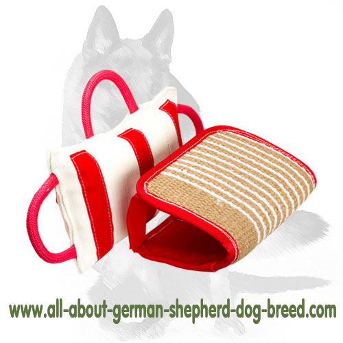 Reliable dog pad supplied with removable jute cover