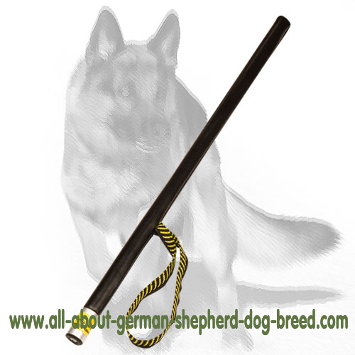 Strong agitation training dog stick