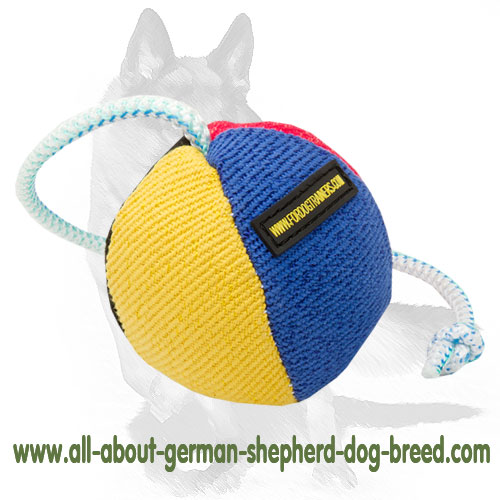 German Shepherd  bright toy with nylon string