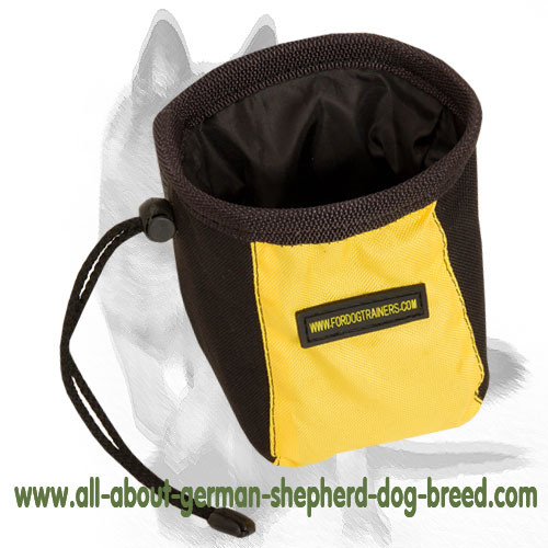 Stain-resistant nylon treat bag