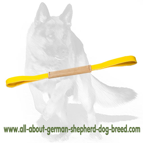Genuine leather bite dog tug