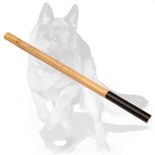 Noisy bamboo dog stick for training