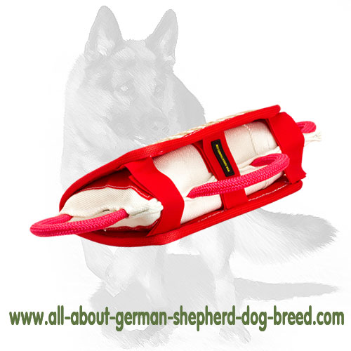 Strong biting pad for dog training with handles