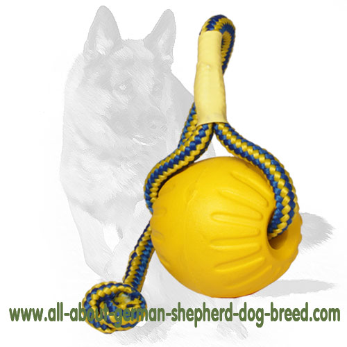 Easy to hold foam dog ball with a string