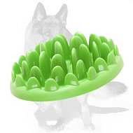 German Shepherd Grassy Interactive Pet Feeder