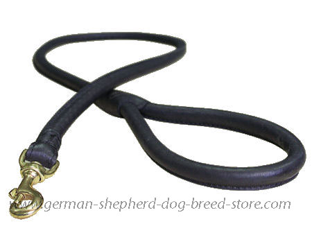 Matching Rolled Leather Dog Lead for German Shepherd