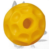 Tetraflex Dog Chew Toy of Medium Size