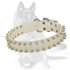 German Shepherd 2 rows Spiked White Leather Dog Collar