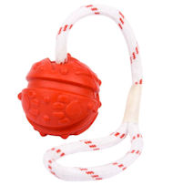 German Shepherd Fun Ball on a Rope