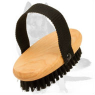 German Shepherd Bristle Dog Brush for Everyday Grooming
