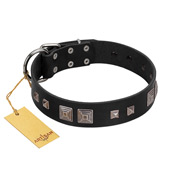 """Foregone Riches"" FDT Artisan Black Leather German Shepherd Collar with Old Silver-like Square Studs and Pyramids"