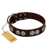 """High and Mighty"" FDT Artisan Classy Brown Leather German Shepherd Collar with Embellished Brooches"