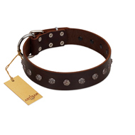 """Graceful Classic"" Mod FDT Artisan Brown Leather German Shepherd Collar"