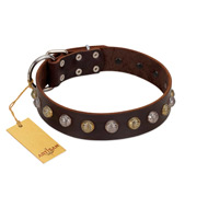 """Gape Buster"" FDT Artisan Brown Leather German Shepherd Collar with One Row of Studs"