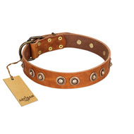 """Precious Relic"" FDT Artisan Tan Leather German Shepherd Collar Adorned with Old Bronze Look Studs"