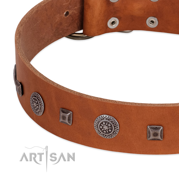 Impressive full grain natural leather collar with decorations for your dog