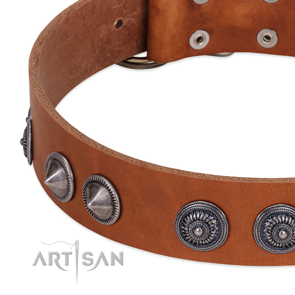 Handmade full grain leather dog collar with reliable traditional buckle