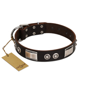 """Baller Status"" FDT Artisan Brown Leather German Shepherd Collar Adorned with a Set of Chrome Plated Studs and Plates"